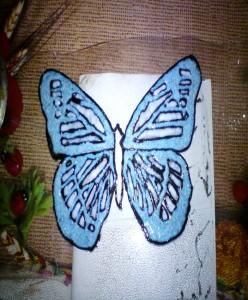 Secando mariposa