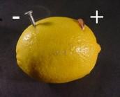 Pila Con Limon