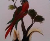 Tarjeta de plumas