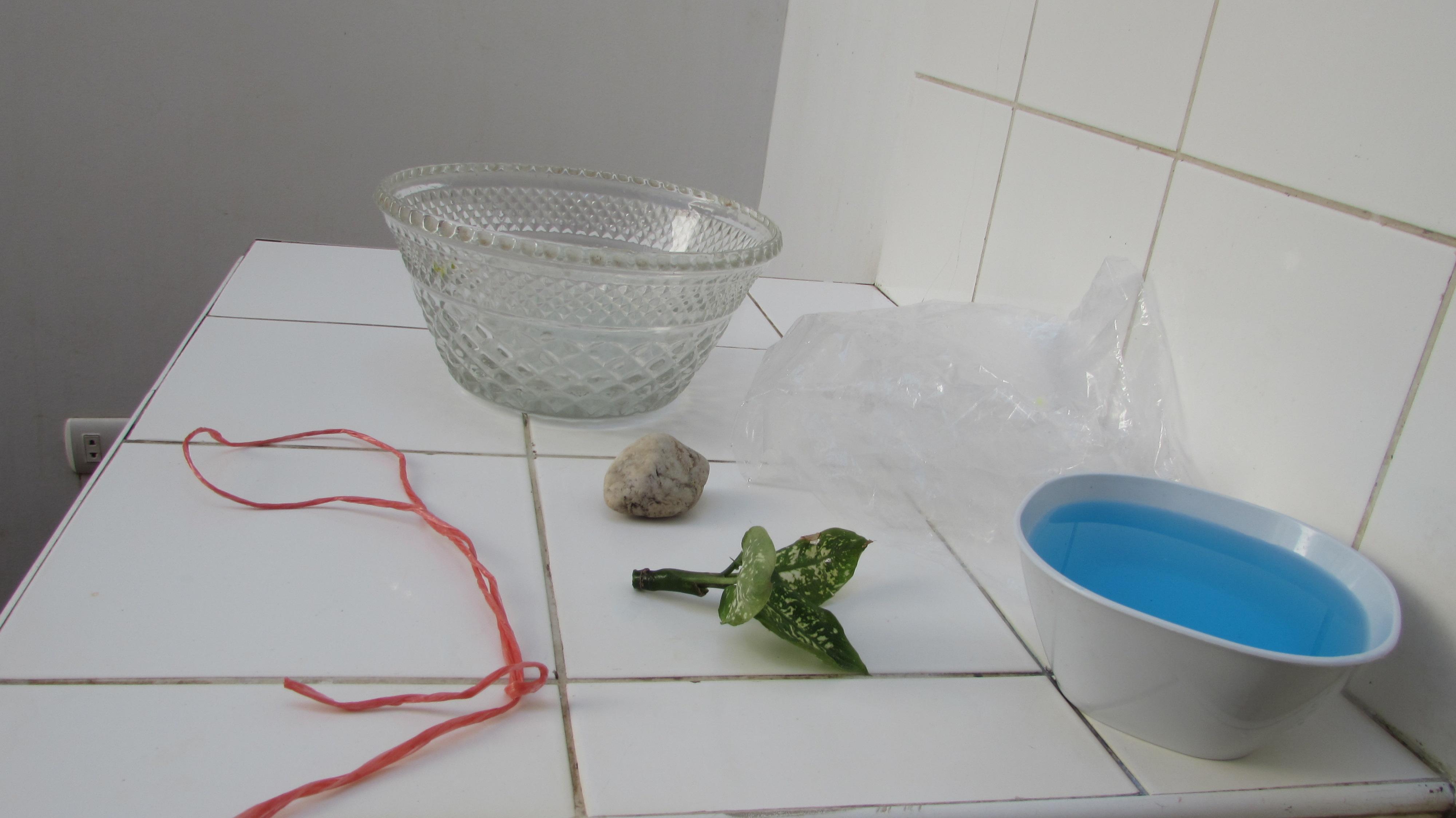 Ciclo del agua: experimento novedoso